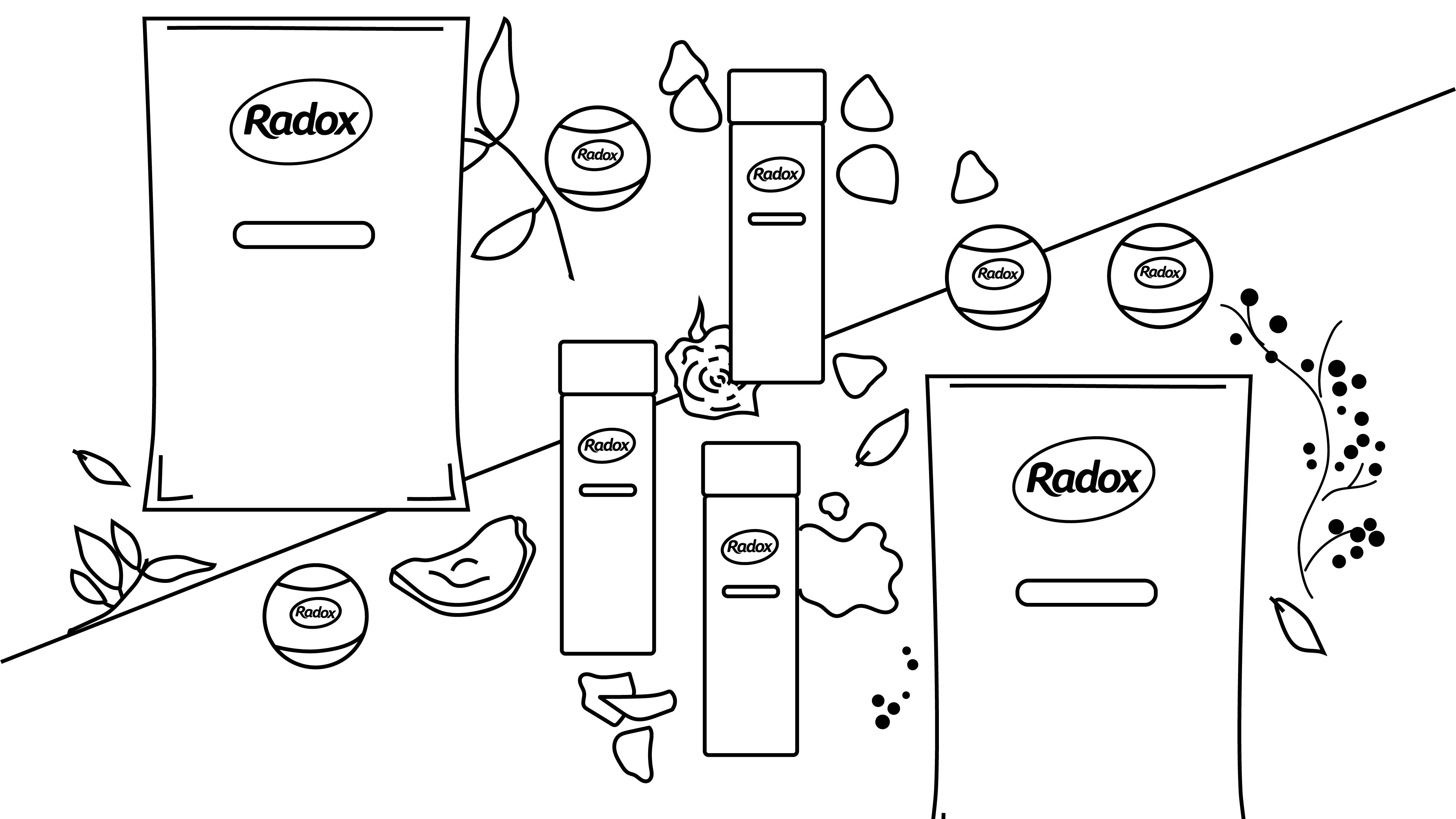 J418989_RadoxAssetBankProject_Scamp_v1-04